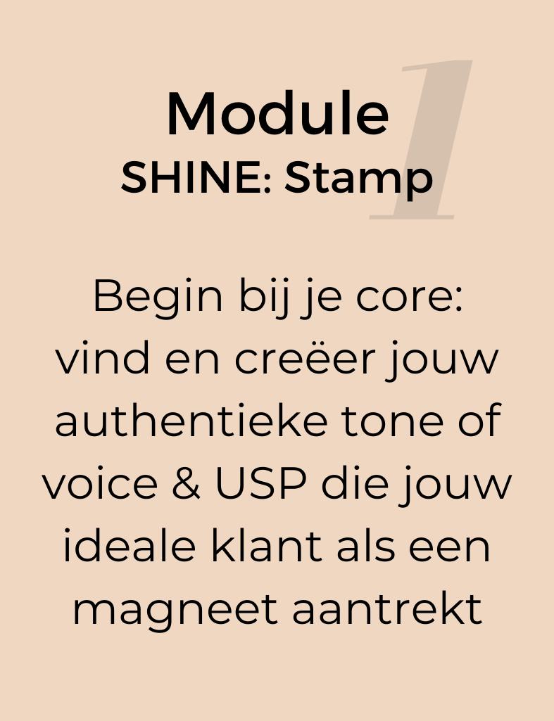 Module-1-SHINE-STAMP