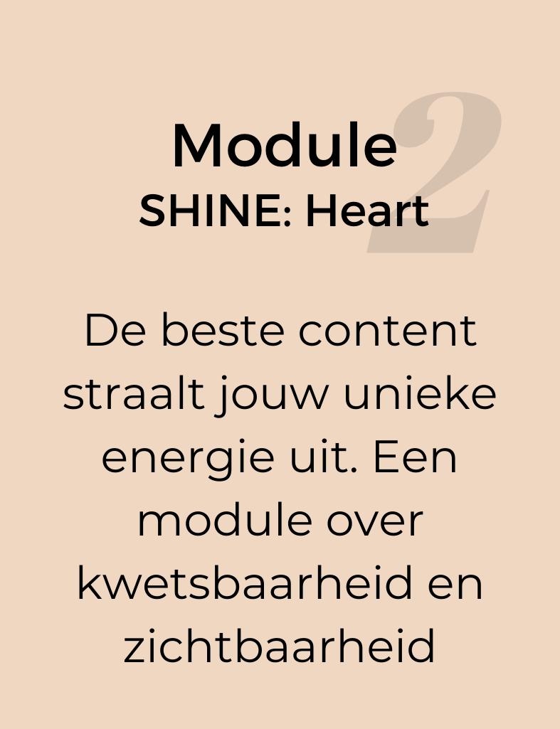 Module-2-SHINE-HEART
