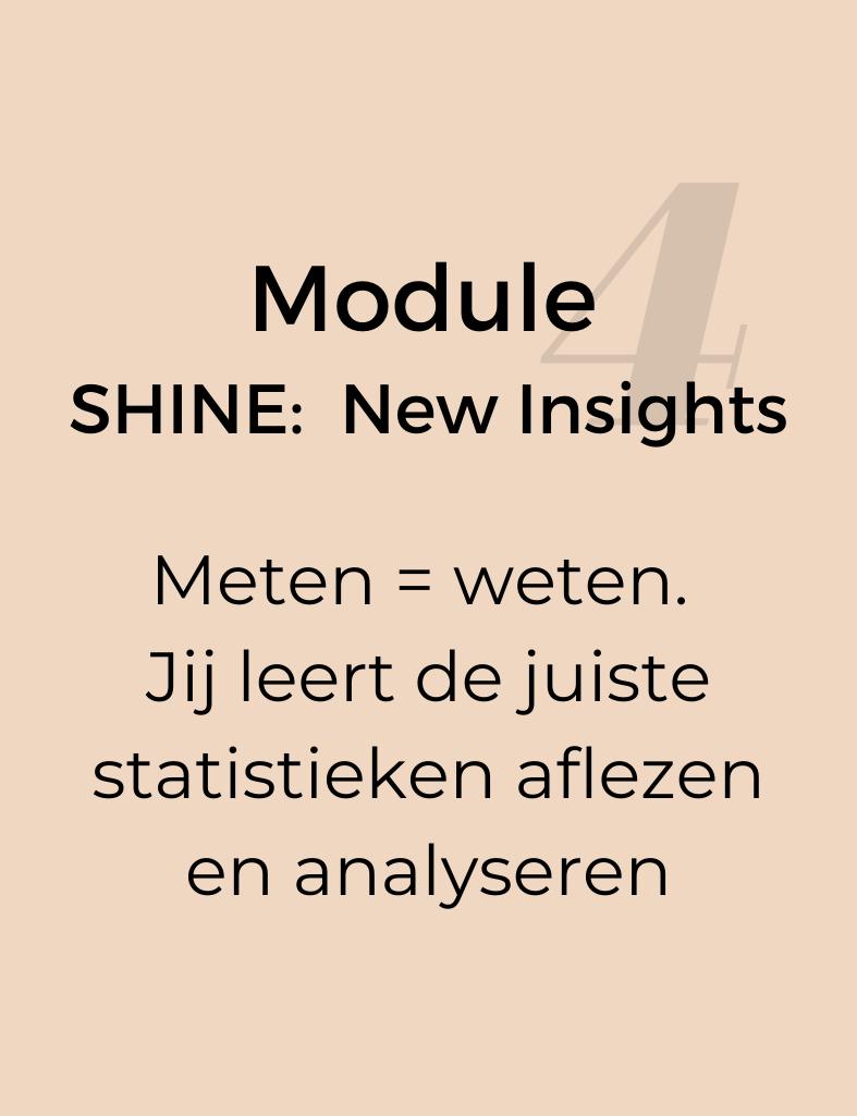Module-4-SHINE-NEW-INSIGHTS