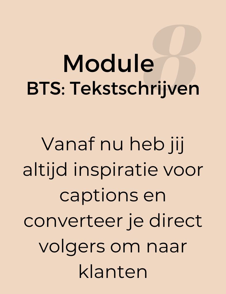 Module-8-BTS-Tekst-Schrijven